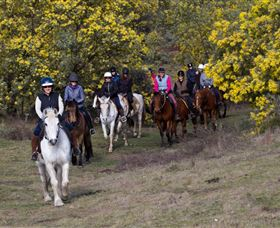 Burnelee Excursions on Horseback - Accommodation Kalgoorlie